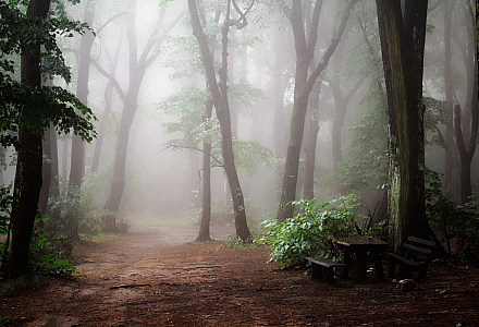 Wald Mobbing, Computerspiele, Vater