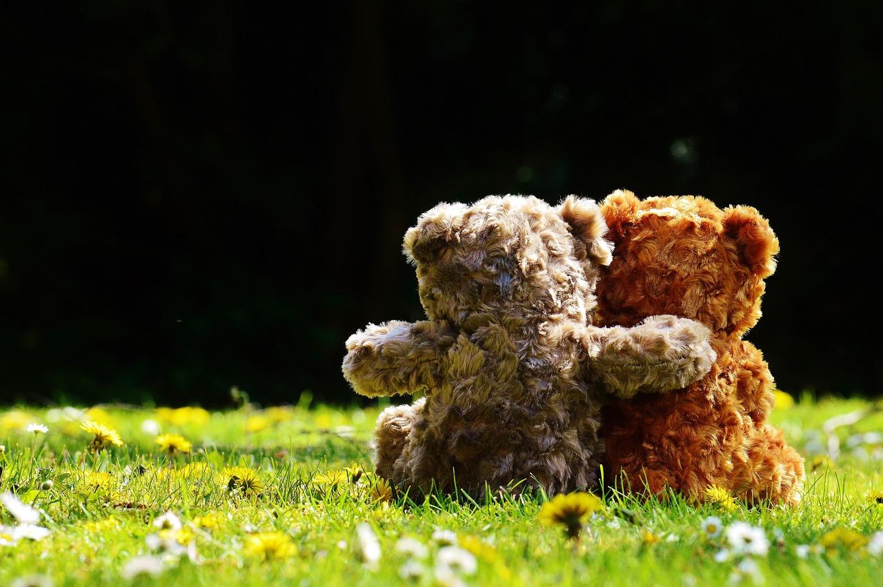 Zwei Teddybären sitzten nebeneinander. Ein Bär hat den Arm um den anderen gelegt.
