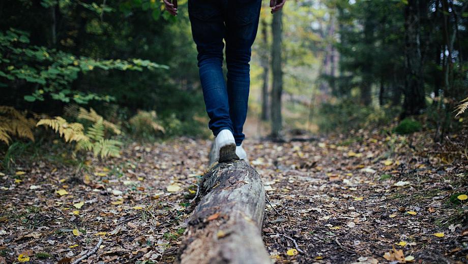 Menthal Balance: Eine Person balanciert über einen Baumstamm.