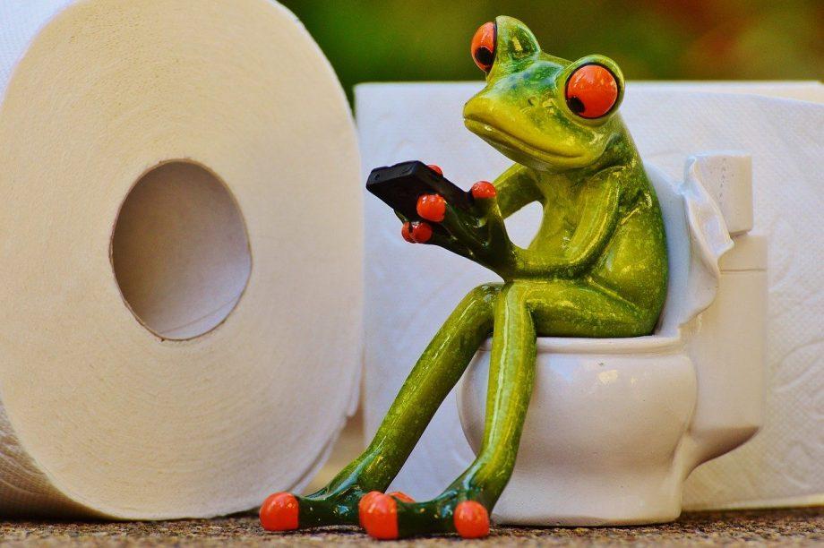 Eine kleine Froschfigur sitzt mit dem Handy in der Hand auf dem Klo.
